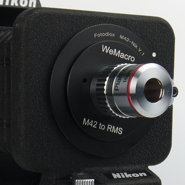 M42 to RMS Adapter on a Bellows and WeMacro Rail