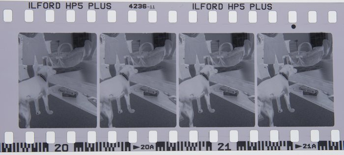 3D Film Negative Showing 4 Half Frames